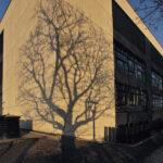 Ecole Strassen